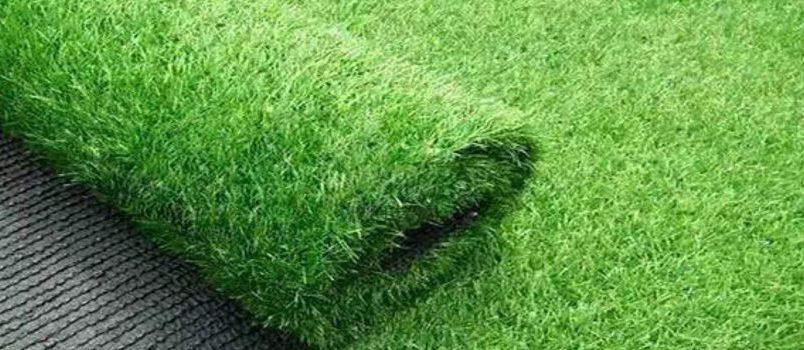 Rolka trawy